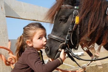 contact enfant poney