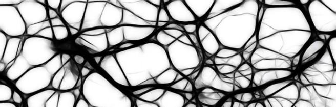 cropped-neurones.jpg