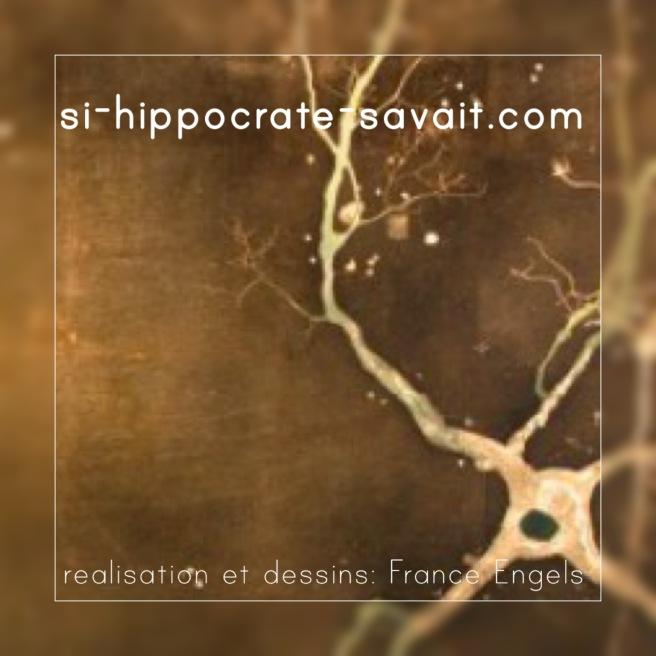 fin classification lesion nerf.jpg