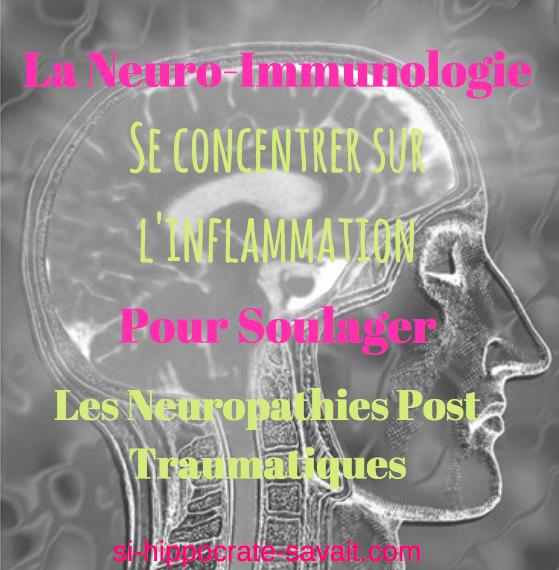 la-neuro-immunologie-inflammation